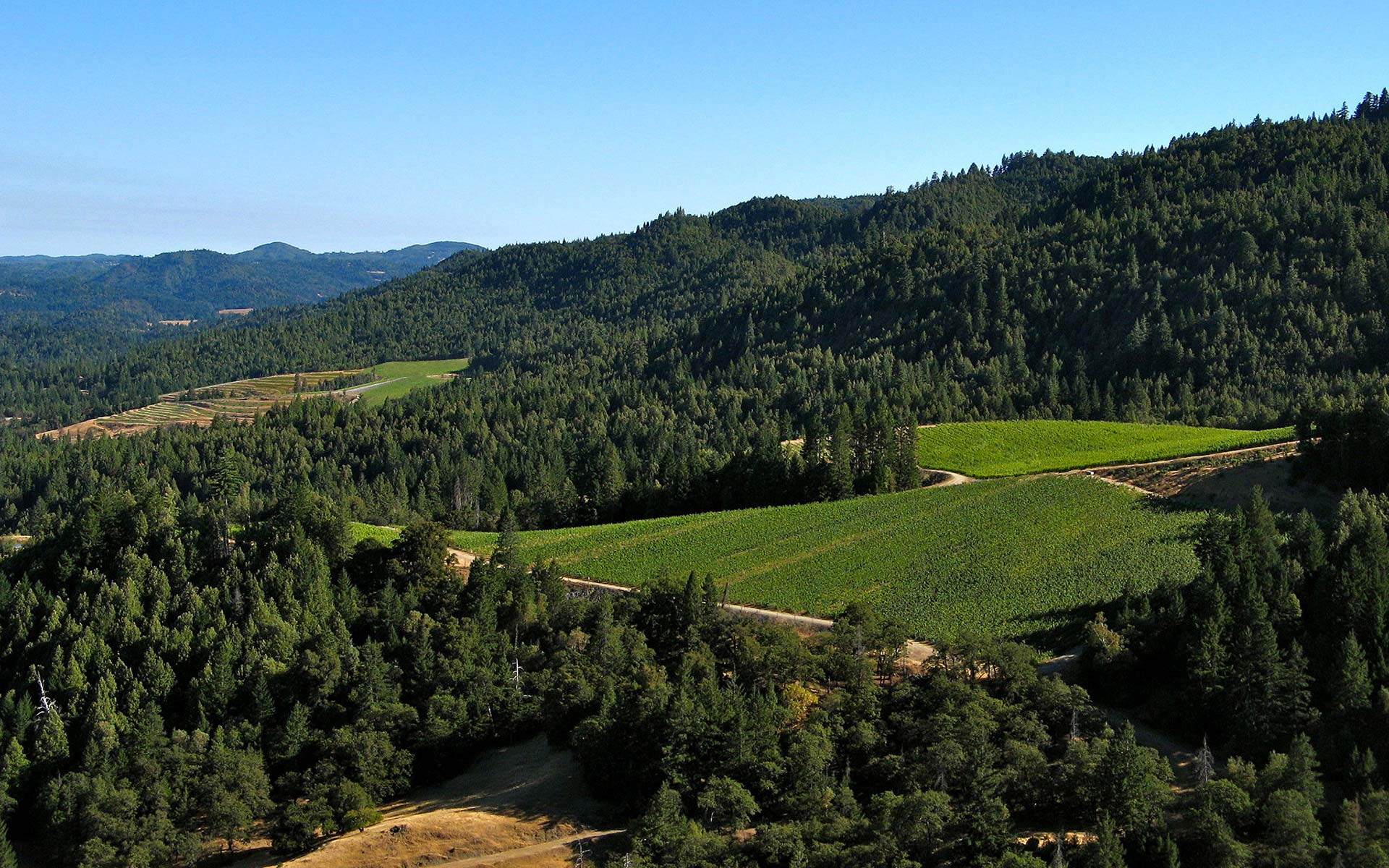 Pristine Setting: Overhead view of Alder Springs landscape